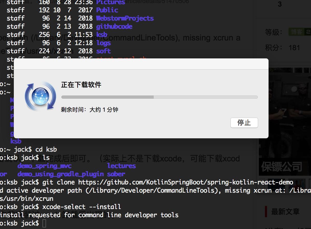 Invalid active developer path error after upgrading to El ...