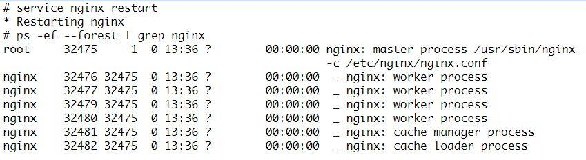 Nginx: On high concurrency, everyone here is slag - Programmer Sought