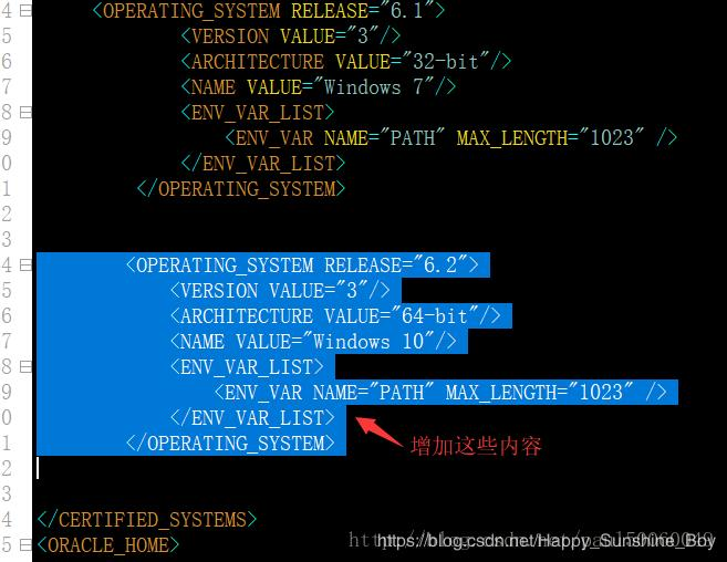 Offline installation of Oracle11g in Win10 environment