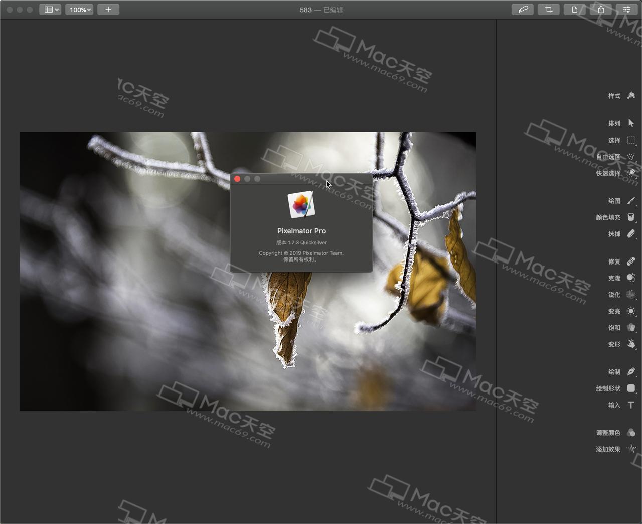 Pixelmator Pro Mac crack version - Programmer Sought